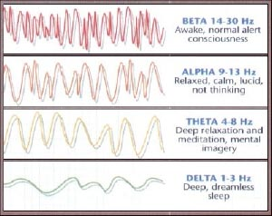 Različne frekvence možganskih valov. Vir: http://complementaryoncology.com/wp-content/uploads/2012/06/psychoneuroimmu.jpg
